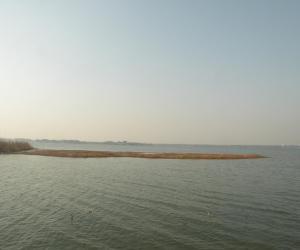 复件 尚湖