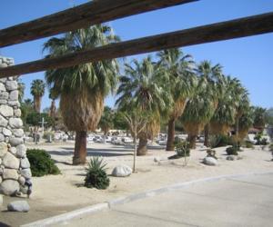 卡维亚公墓