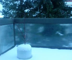 阳台上的积雪