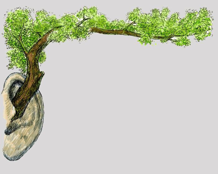 [方晓枫]耳朵里的大树