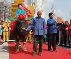 鞭春牛(上海)