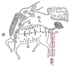02.龙马河图B