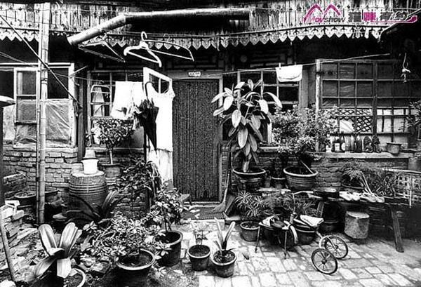 [王学泰]老北京胡同的最后留影